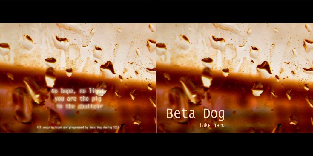 betadog_front_cd