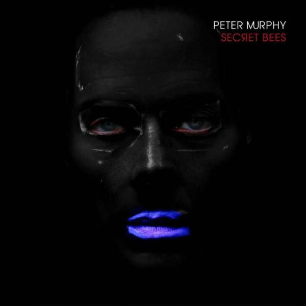Peter Murphy – Secret Bees