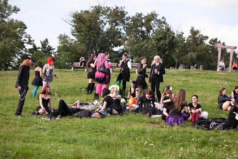 picnic pgt6