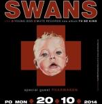 swans s