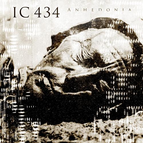 IC-434-Anhedonia