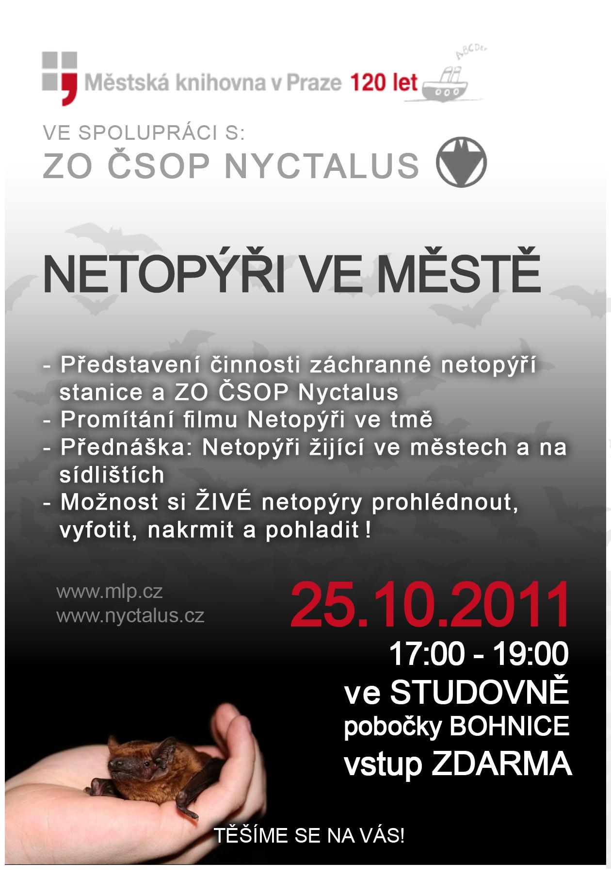 NETOPI_VE_MST