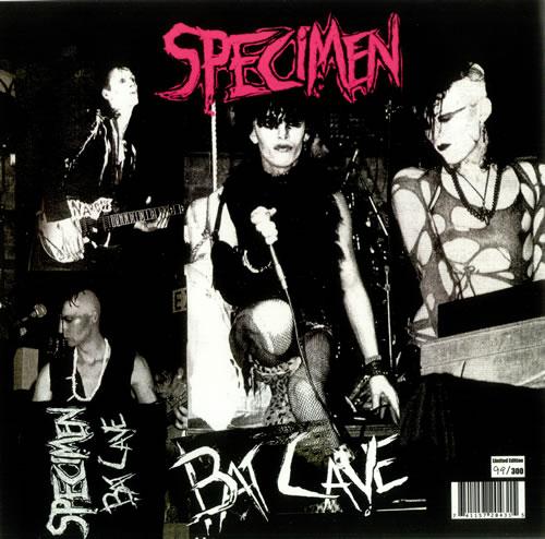 Specimen-Bat-Cave-437195