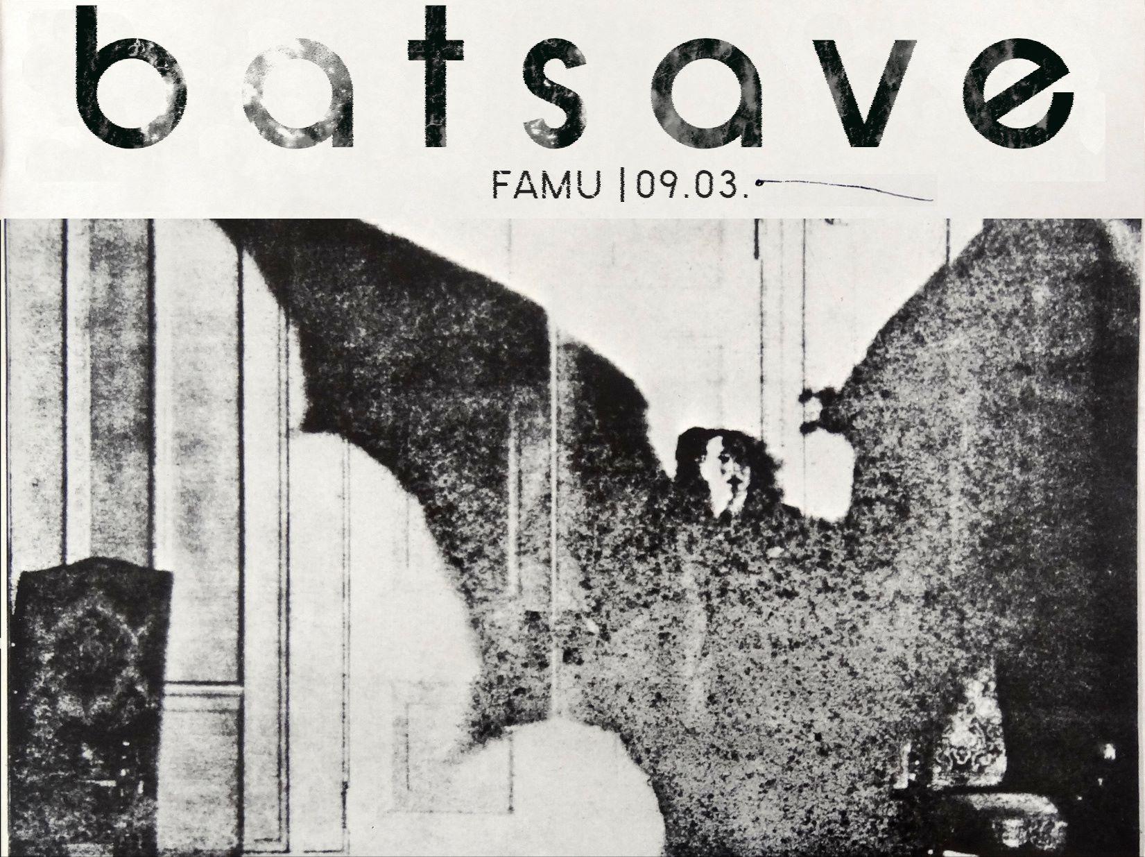 BatSave